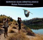 SERVICIO GUIA ORNITOLOGICO