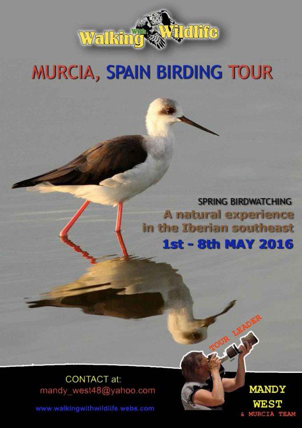 poster-spring-trip-2016 B