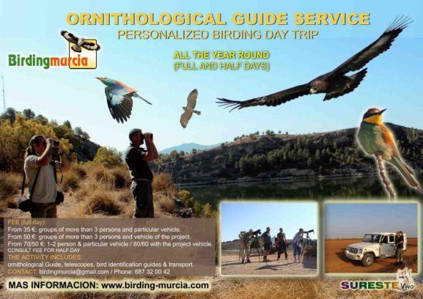 servicio-guia-ornitológico