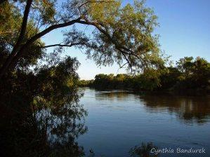 04 Birdingmurcia - Cynthia Bandurek - landscape