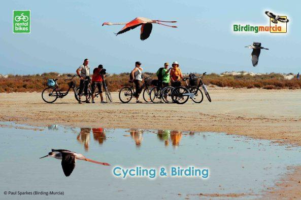 17 Birdingmurcia -  Cycling&Birding