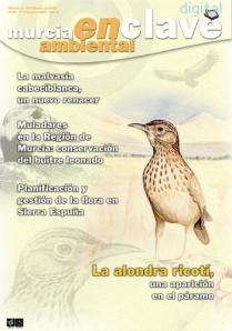 01 BIRDINGMURCIA - Biovisual - portada enclave