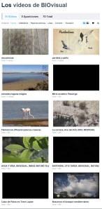 46 BIRDINGMURCIA - Biovisual - videos vimeo