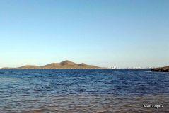 Isla Perdiguera - birdingmurcia 01